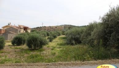 Rif. 349 - Terme Vigliatore - Terreno con ruderi in VENDITA
